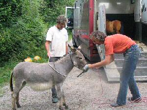 visite de l'élevage